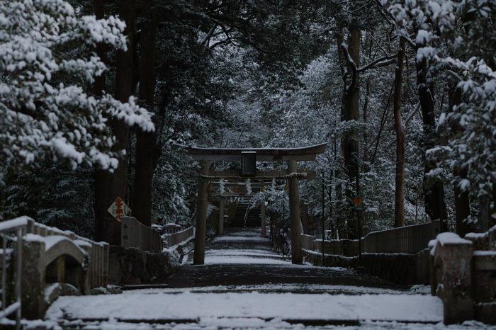 京都    2/11 三宅八幡  雪景色_f0021869_23390039.jpg