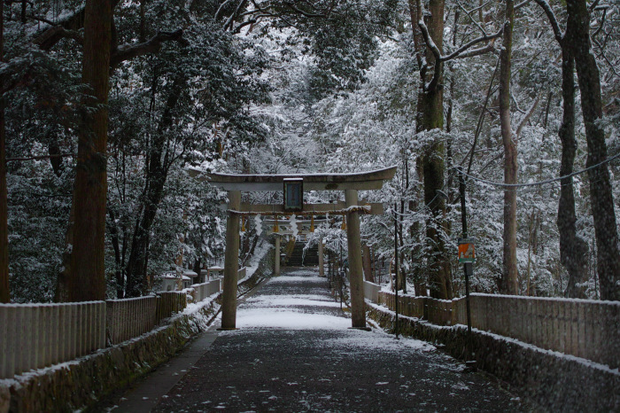 京都    2/11 三宅八幡  雪景色_f0021869_23393340.jpg