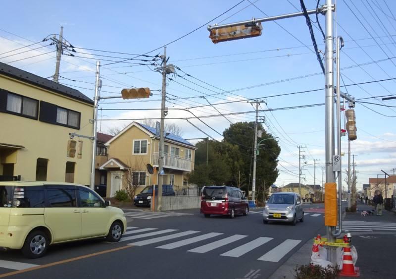 こぶし通りに信号機_f0059673_19291383.jpg