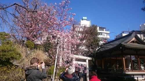 「春はそこまで」_a0075684_23532739.jpg