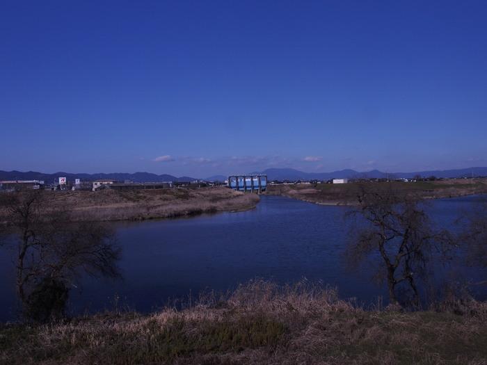 早春の川。宝満川。_a0149488_18455966.jpg