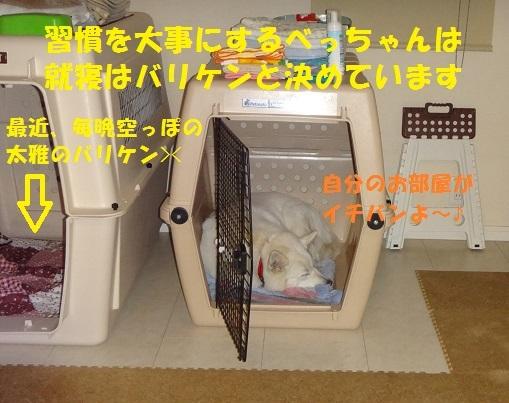 f0121712_08532251.jpg