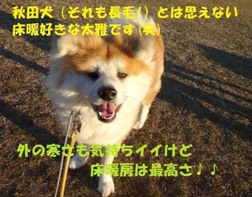 f0121712_09091555.jpg