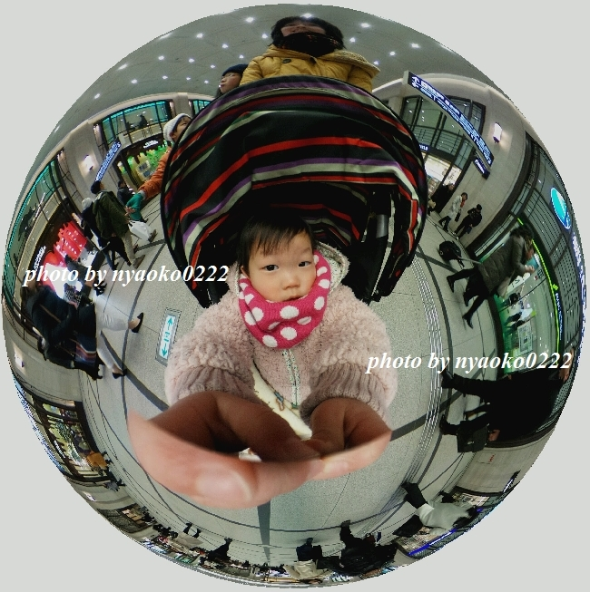 e0365414_17000018.jpg