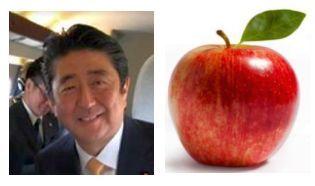安倍首相の英語_d0168150_09254525.jpg