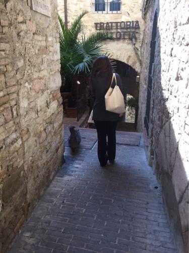 アッシジ 聖フランチェスコ聖堂 神々しいエネルギー満ちる街 イタリア珍道中4日目!トラットリア Pallota ☆_f0355367_00035811.jpg