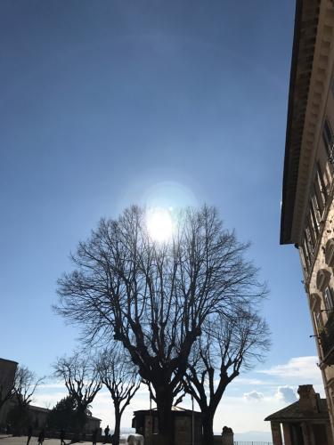 アッシジ 聖フランチェスコ聖堂 神々しいエネルギー満ちる街 イタリア珍道中4日目!トラットリア Pallota ☆_f0355367_00074932.jpg