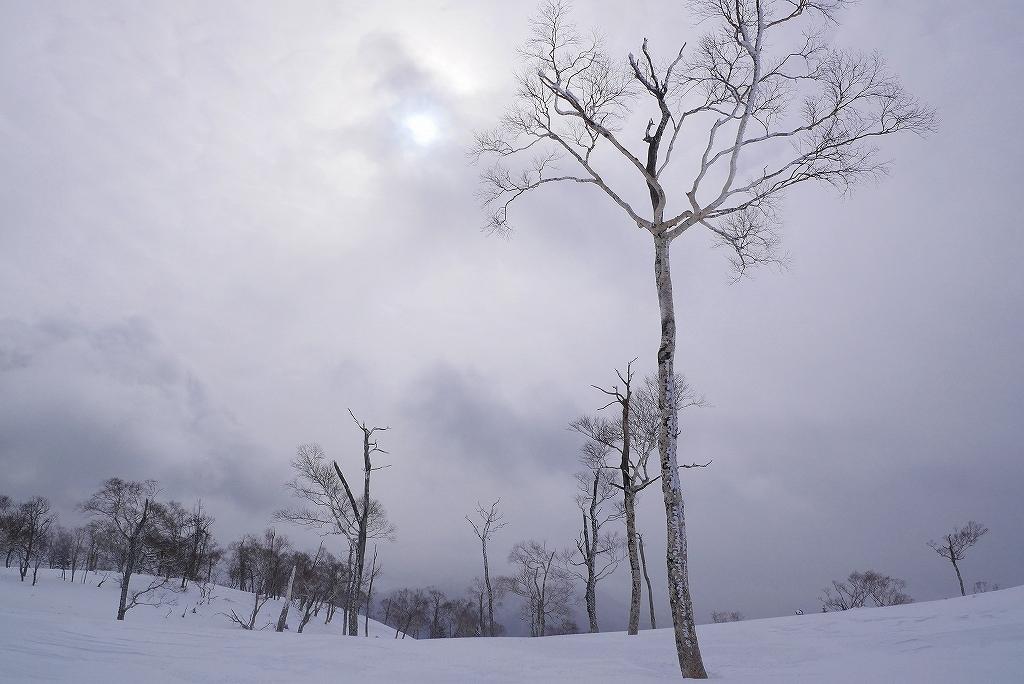 紋別岳から748mピークピストン、2017.2.14_f0138096_21441910.jpg