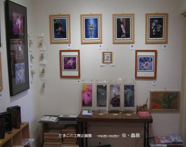 たまごの工房 企画展 「-mozo mozo-虫・蟲 展」 その2_e0134502_1622726.jpg