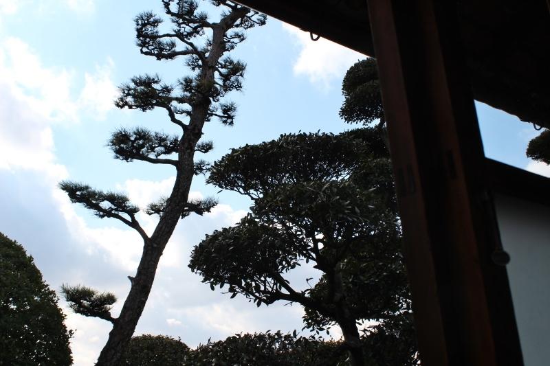 茶和や香(54)、六鹿茶遊会(43)_b0220318_04541803.jpg