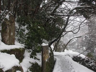 雪化粧③_f0289632_19351325.jpg