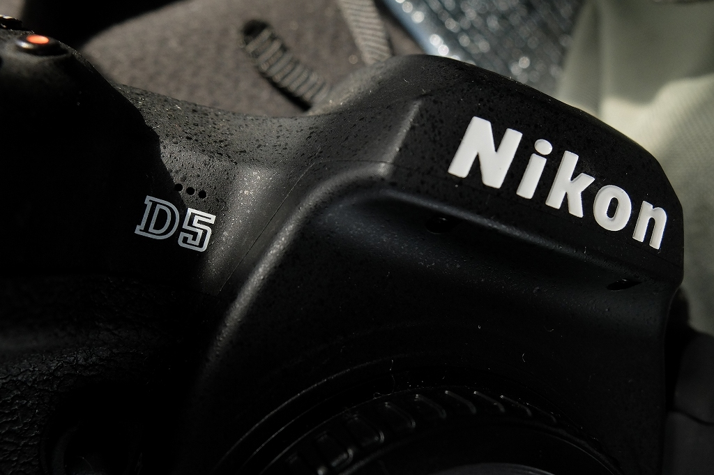 Nikon 哲学 Nikon D5_f0050534_13103628.jpg