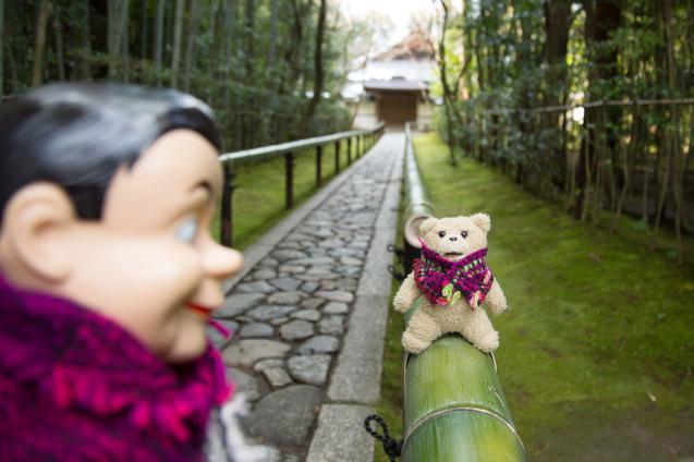 """昆布男と """"高桐院"""" へ_e0369736_17041447.jpg"""
