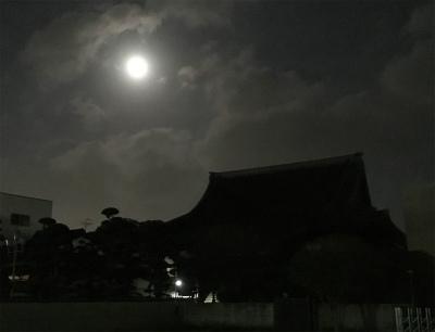 夜ラン 朝ラン_f0220089_12203931.jpg