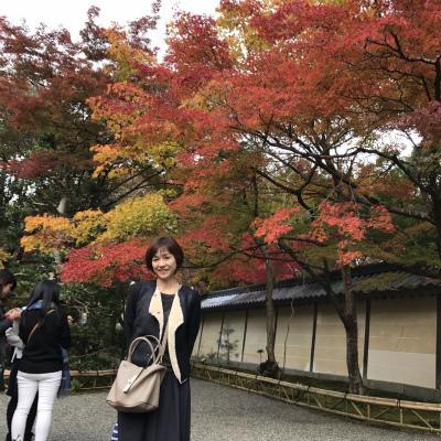 かみさん 京都へ_f0220089_12345066.jpg