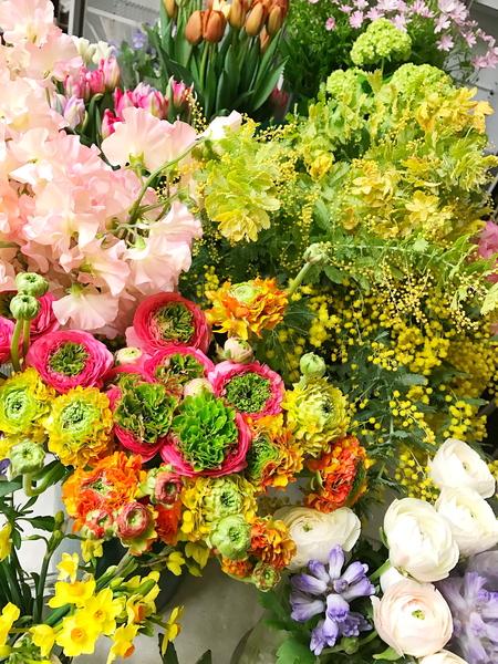 一会定期レッスン春の花開催中_a0042928_8184656.jpg