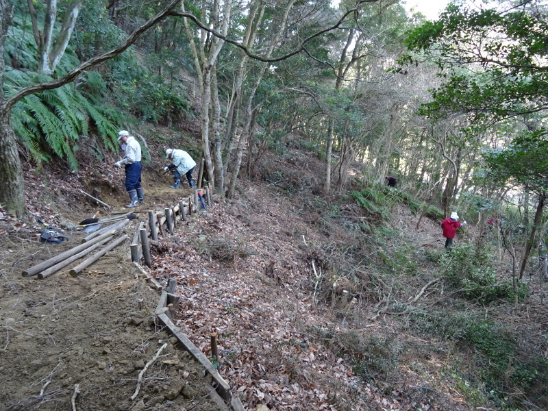 ぼうけん山道拡張作業継続・・・うみべの森_c0108460_18185686.jpg
