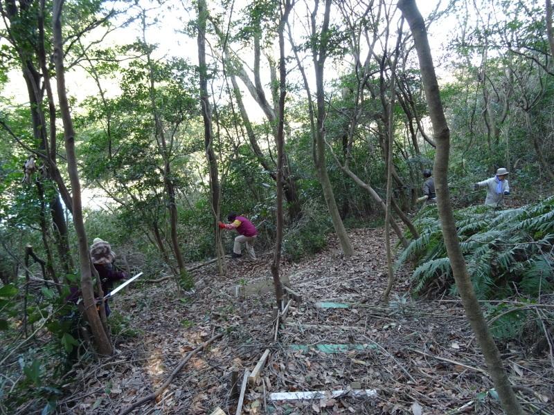 ぼうけん山道拡張作業継続・・・うみべの森_c0108460_18200629.jpg