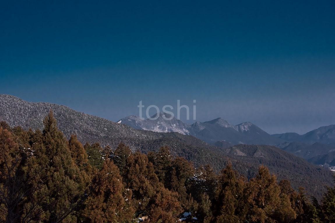 暑かった三峰山 1_c0350572_21375181.jpg