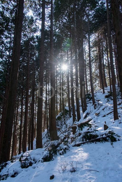暑かった三峰山 1_c0350572_21380371.jpg