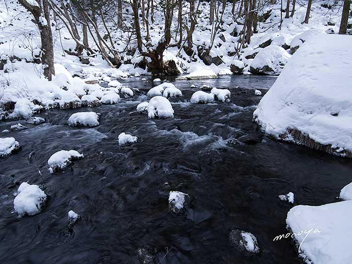 冬の滝_c0085877_12333798.jpg