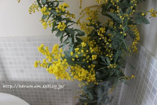 春の花とファブリックパネル_d0291758_21534176.jpg