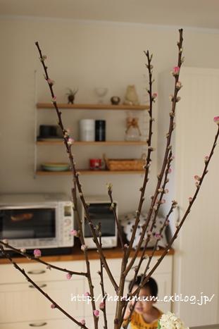 春の花とファブリックパネル_d0291758_2213291.jpg