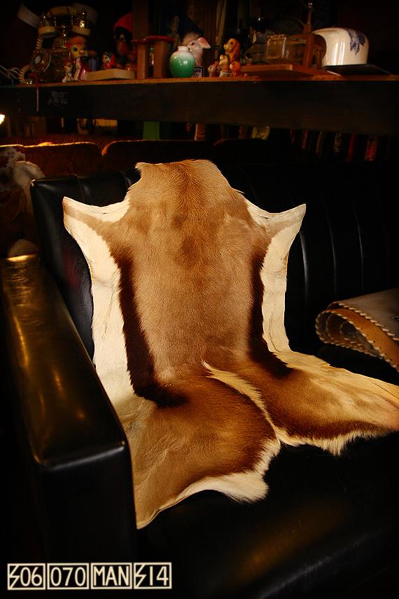 子鹿の革ラグ バンビ カウラグ_e0243096_12544864.jpg