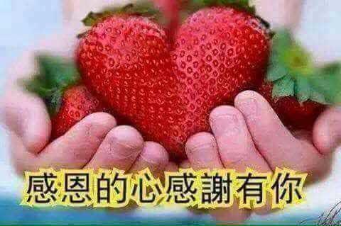 b0348023_17131359.jpg