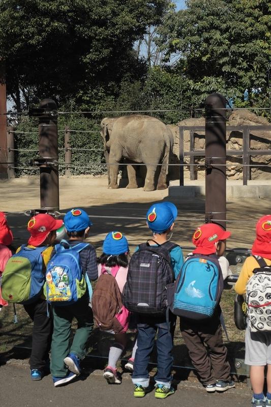はじめての上野動物園_e0364223_21475433.jpg