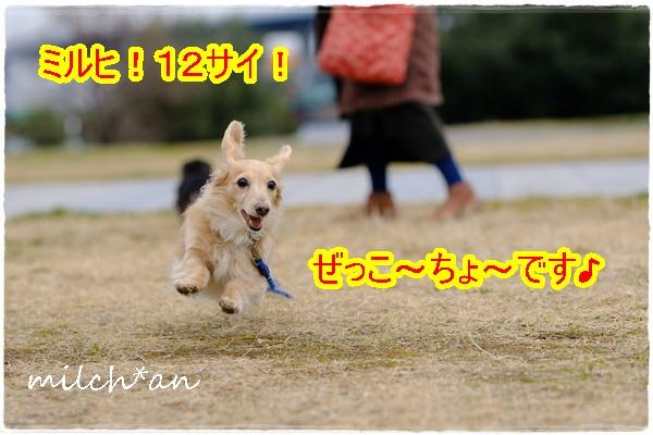 b0115642_15114353.jpg
