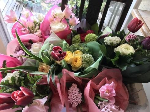 シネンシス入荷しました・・地味な花ですが人気です・・_b0137969_21501254.jpg
