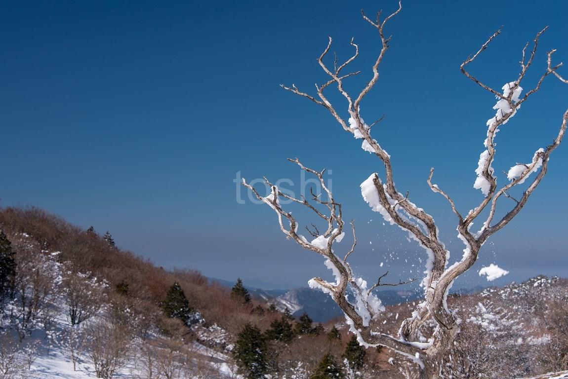暑かった三峰山 3_c0350572_18100685.jpg