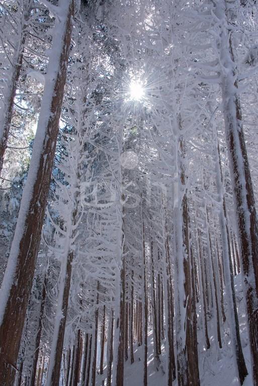 暑かった三峰山 3_c0350572_18103684.jpg