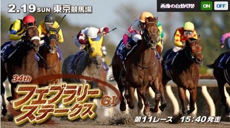 厩舎、騎手、そして馬が初G1勝利を目指す、フェブラリーS_d0183174_17415828.jpg