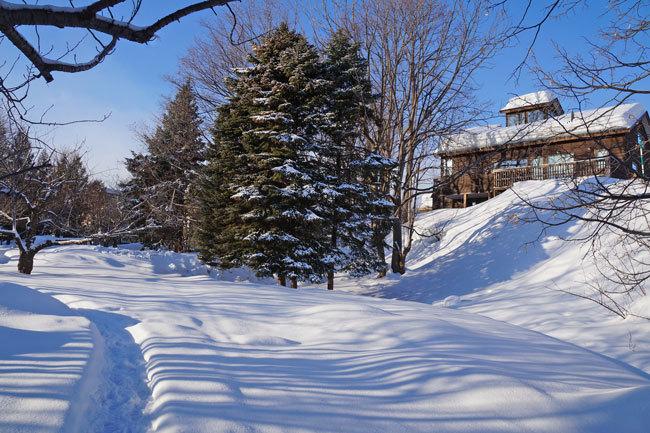 雪景色_d0162994_10084799.jpg