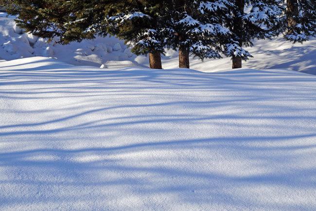 雪景色_d0162994_10091231.jpg