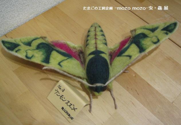 たまごの工房 企画展 「-mozo mozo-虫・蟲 展」 その6 _e0134502_21215571.jpg