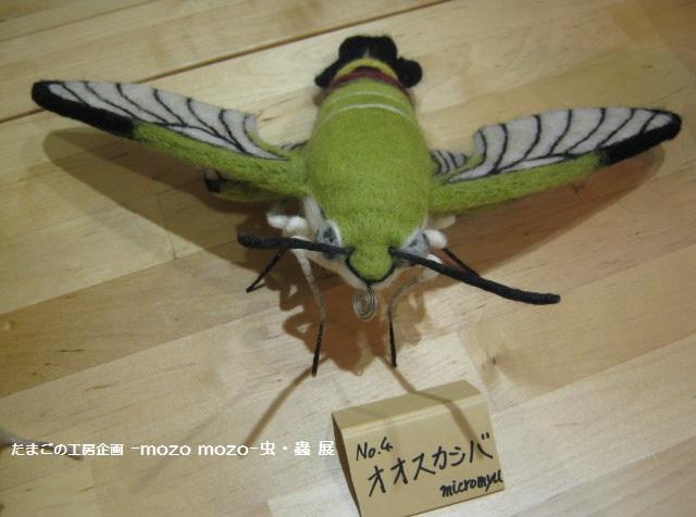 たまごの工房 企画展 「-mozo mozo-虫・蟲 展」 その6 _e0134502_21222262.jpg