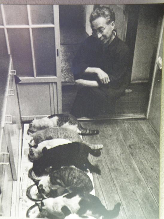 あまあまさん&大佛(おさらぎ)次郎(じろう)×ねこ写真展2017「猫は、生涯の伴侶」~大佛次郎は猫を愛した作家でした~ 2月22日~3月20日まで_b0162726_23201066.jpg