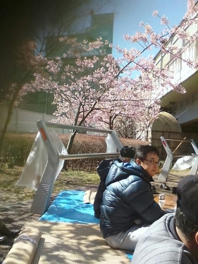 川津桜でお花見_d0057733_18133021.jpg