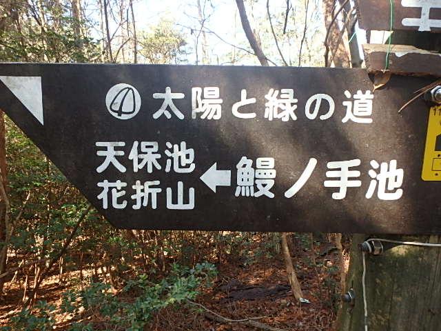 西神戸 秘境 丹生山 おじさんの楽しい休日_f0334143_21343015.jpg
