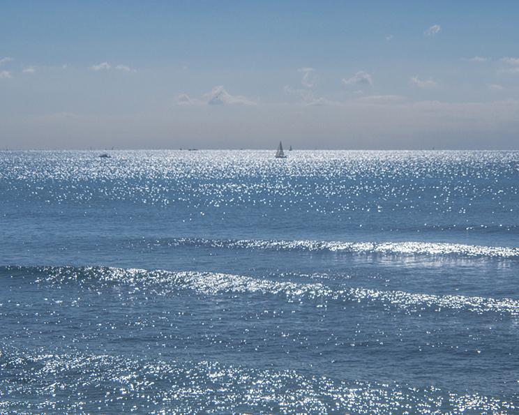 七里ヶ浜の海・2月19日篇。_b0022268_18513769.jpg