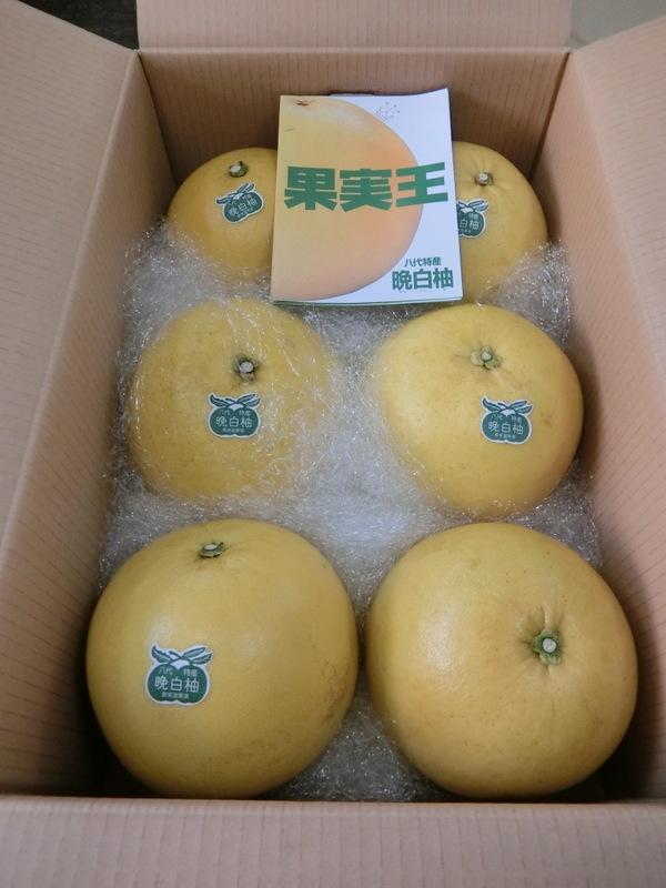 2月20日(月)『晩白柚(ばんぺいゆ)』の餡つくりでコラボ商品_d0278912_20031254.jpg