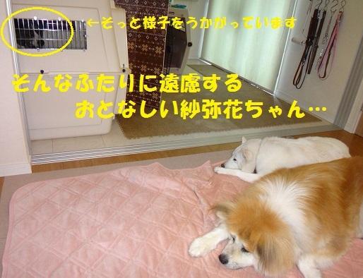 f0121712_07425623.jpg