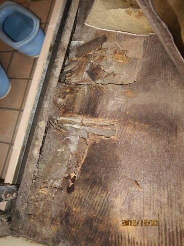 脱衣室、傷んだ床の補修リフォーム_f0140817_01271921.jpg