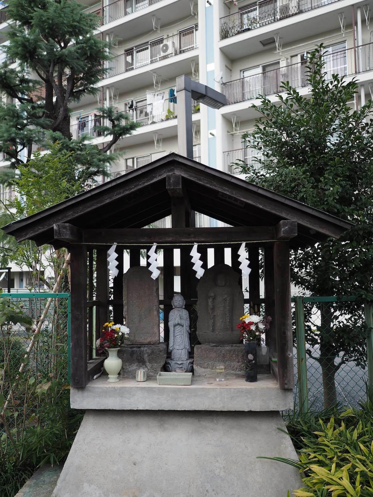 聖蹟桜ケ丘スナップ その35_b0360240_19422001.jpg
