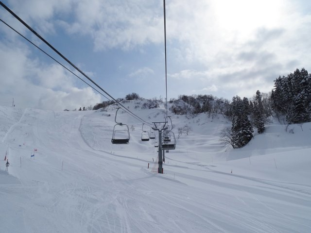 温泉 場 松之山 スキー 松之山温泉スキー場 ‐