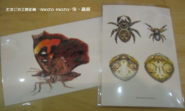 たまごの工房 企画展 「-mozo mozo-虫・蟲 展」 その7  _e0134502_21102325.jpg