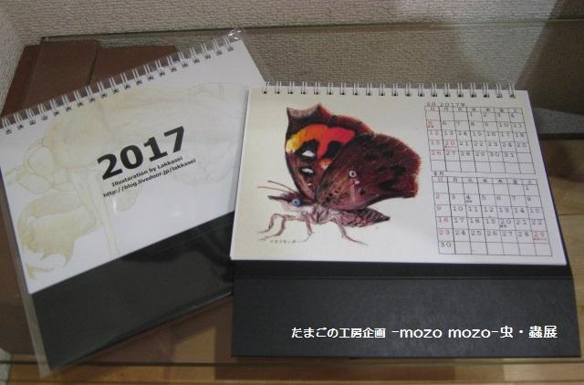 たまごの工房 企画展 「-mozo mozo-虫・蟲 展」 その7  _e0134502_2162982.jpg